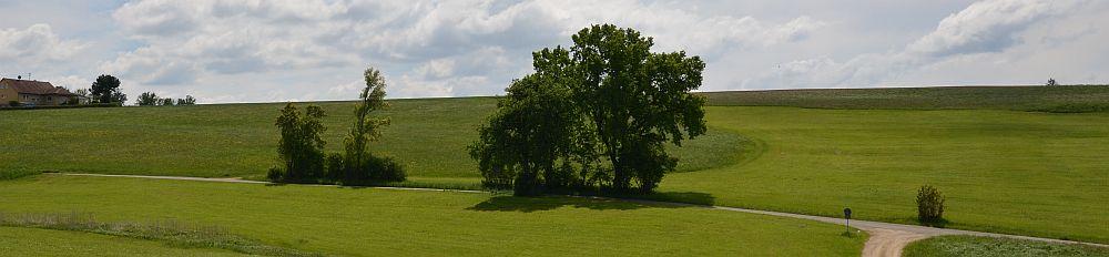 pan-schurwald-summer