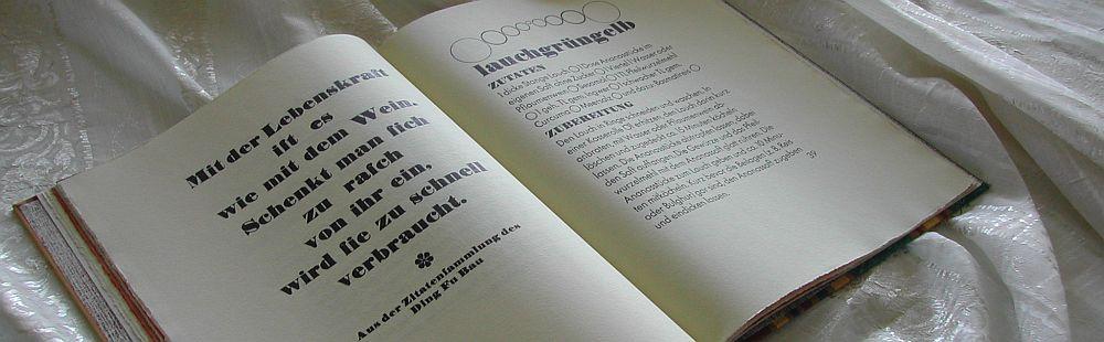 schmausbuch-lebenskraft