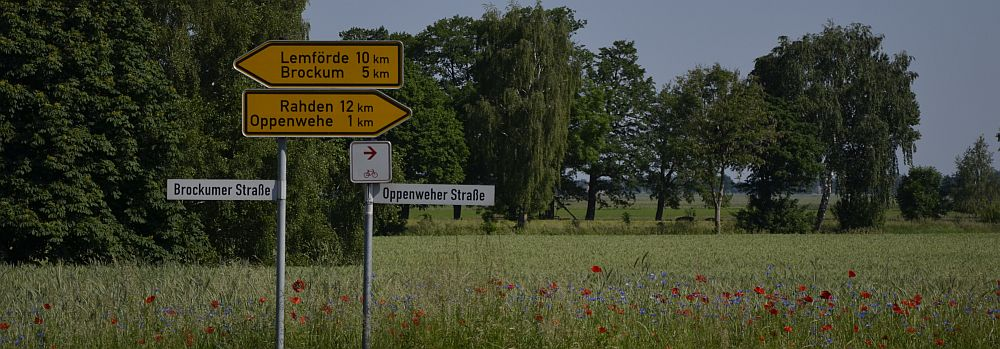 roadsign-with-poppies