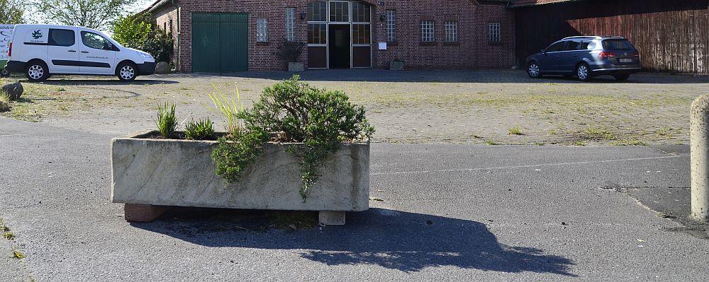 plant-pot-01