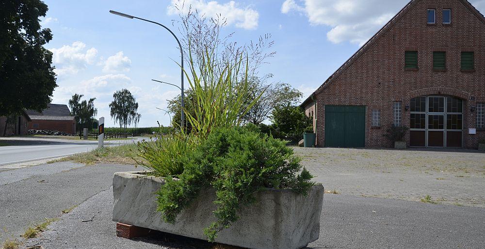plant-pot-03