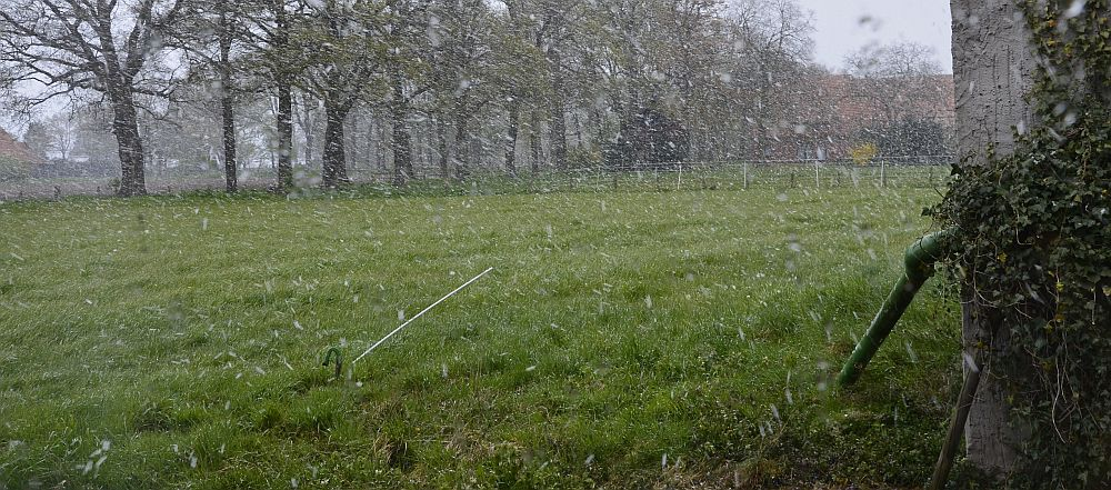 Shower of sleet in late April